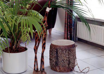 Afrikaanse cultuur in Nederland